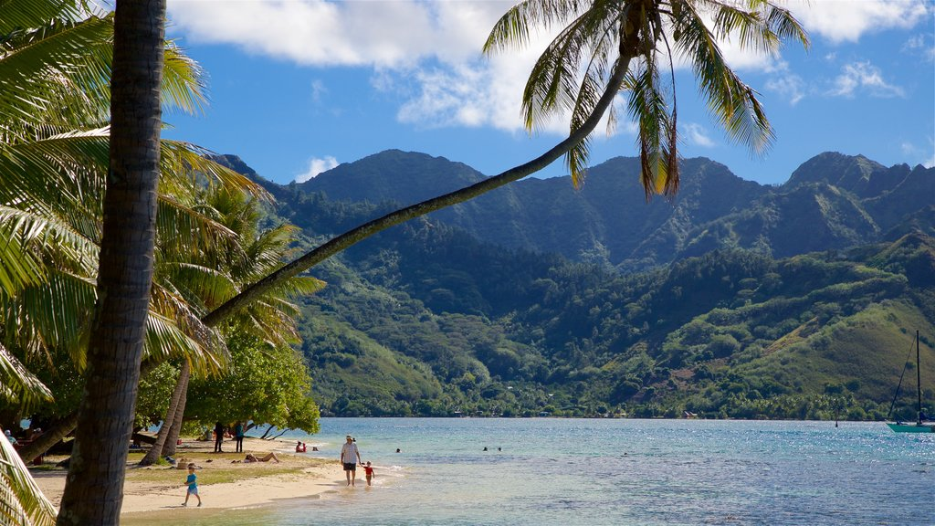 Moorea showing tranquil scenes, tropical scenes and a beach