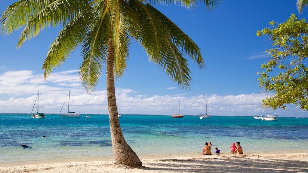 Moorea mostrando una playa de arena, escenas tropicales y vistas generales de la costa