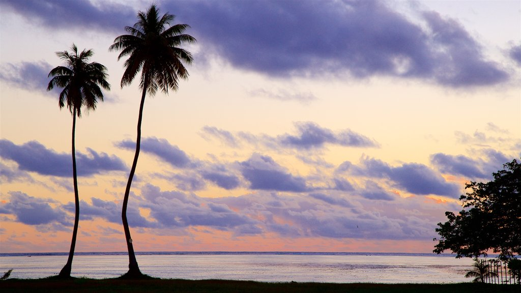 Moorea featuring tropical scenes, a sunset and general coastal views