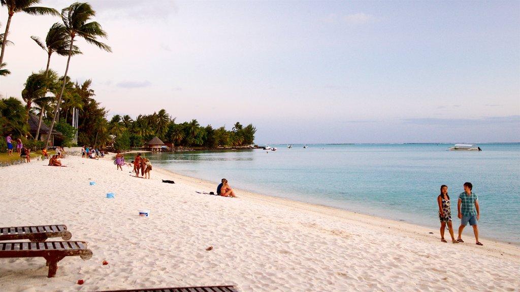 Playa Matira mostrando vistas generales de la costa, una playa de arena y escenas tropicales