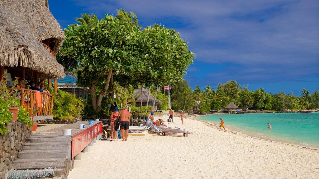 Matira Beach which includes tropical scenes, a sandy beach and general coastal views
