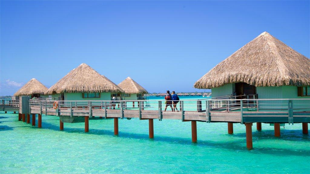 Playa de Le Meridien mostrando vistas generales de la costa y escenas tropicales y también una pareja