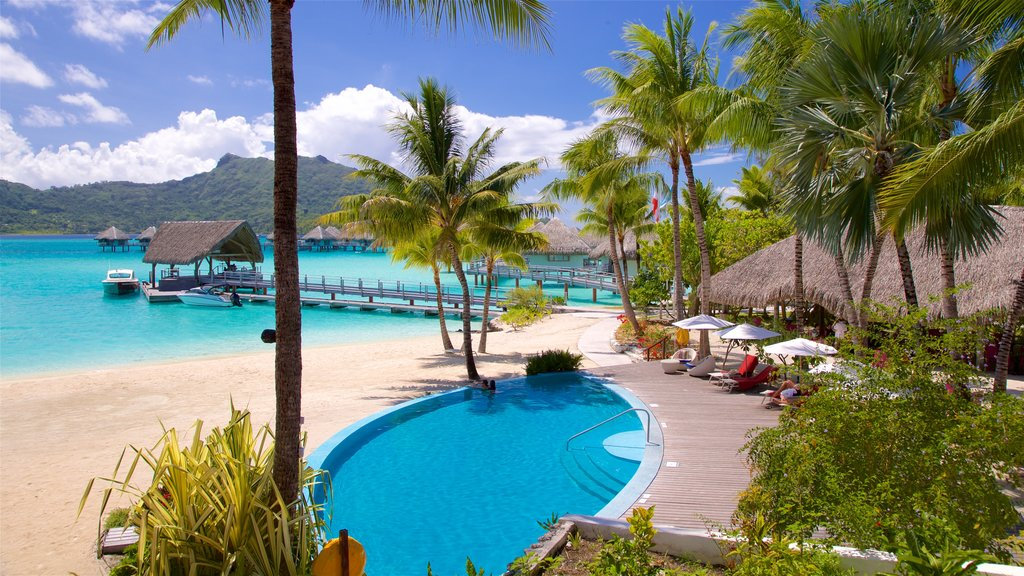 Le Meridien Beach featuring tropical scenes, a pool and a beach