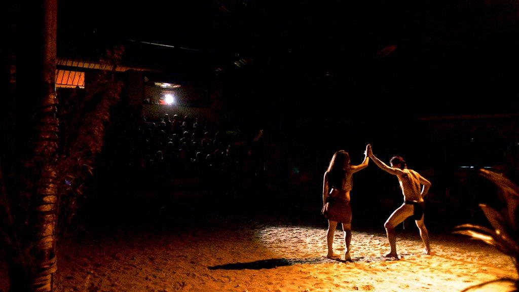 Centro cultural Tiki Village ofreciendo escenas nocturnas, cultura indígena y arte escénica