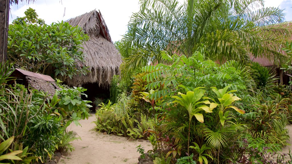 Tiki Village Cultural Centre showing a garden and tropical scenes