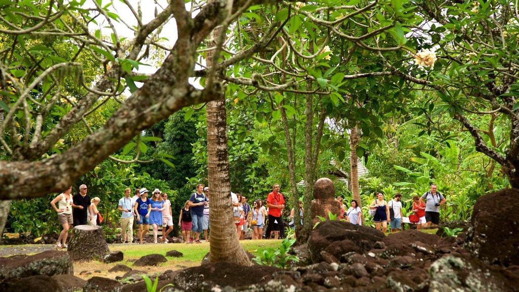 Templo Marae Arahurahu que incluye cultura indígena y un jardín y también un pequeño grupo de personas