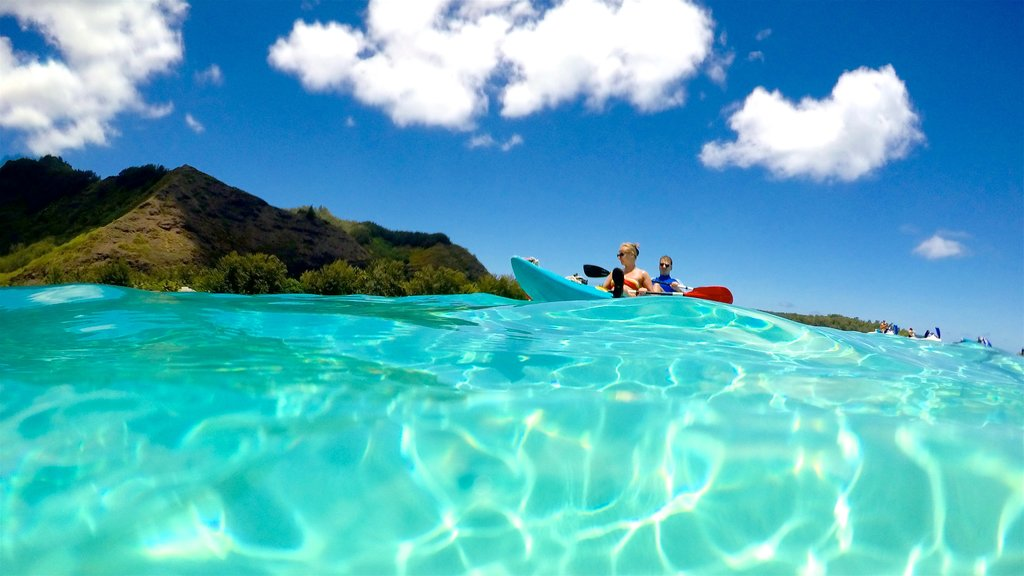 Tiahura Beach showing kayaking or canoeing, general coastal views and tropical scenes