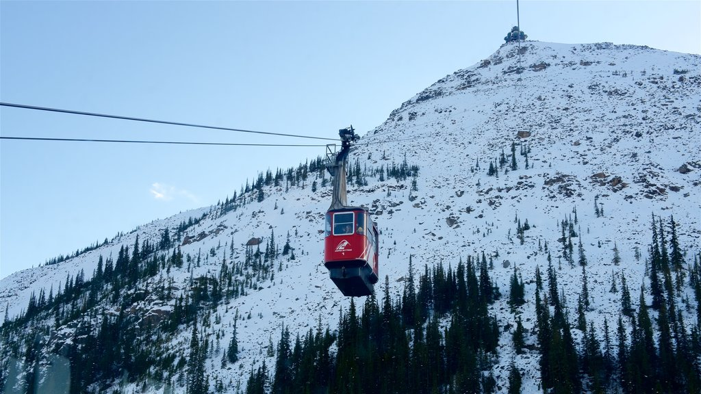 Jasper Tramway featuring snow, a gondola and mountains