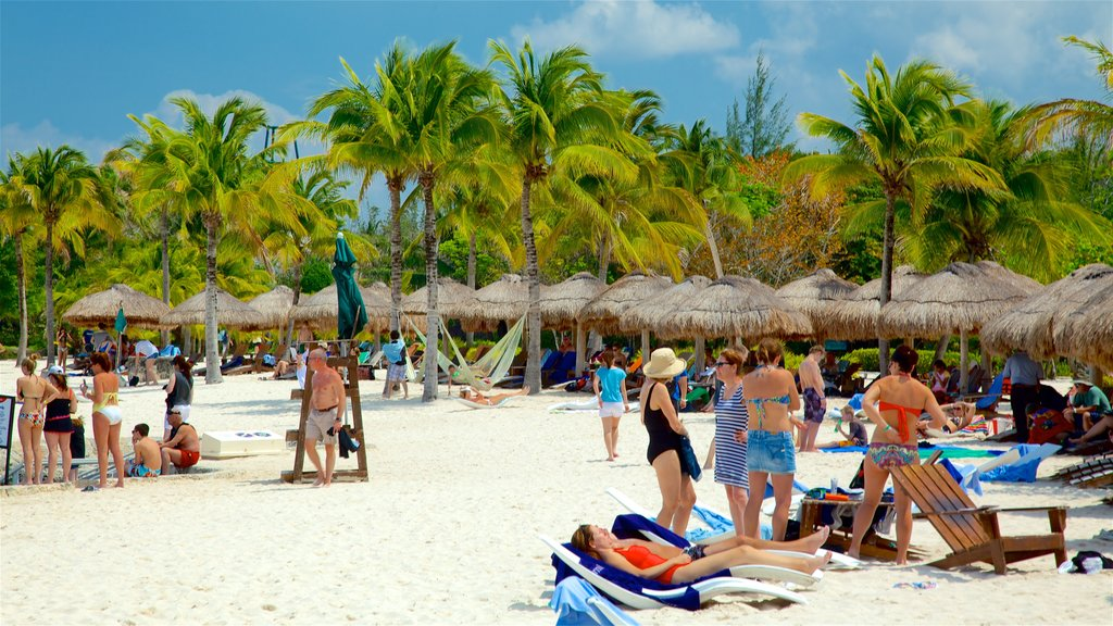Cozumel showing a sandy beach and tropical scenes as well as a small group of people