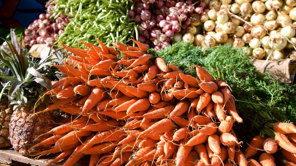 Santa Clara ofreciendo comida y mercados