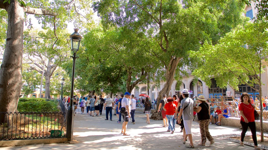 Plaza de Armas showing a park as well as a large group of people