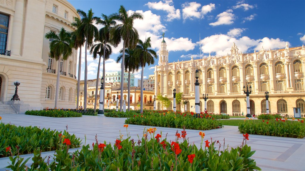 La Habana Grand Theater featuring wildflowers, heritage architecture and a garden