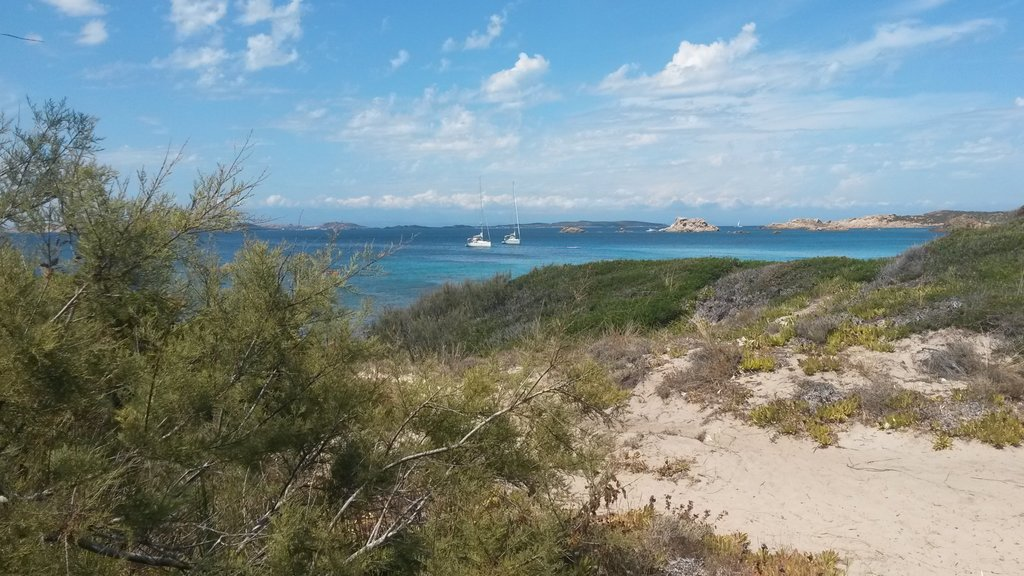 La Maddalena showing a sandy beach and general coastal views