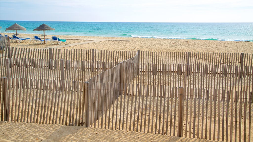 Faro Island Beach which includes general coastal views and a beach