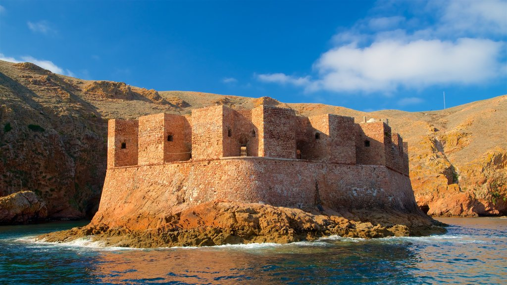 Berlenga Island showing general coastal views, heritage architecture and a castle