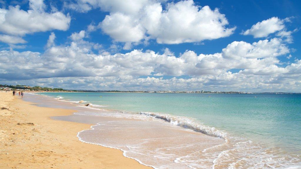 Meia Praia Beach which includes a sandy beach and general coastal views
