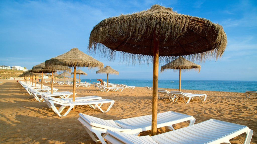 Fisherman\'s Beach which includes a beach, general coastal views and tropical scenes