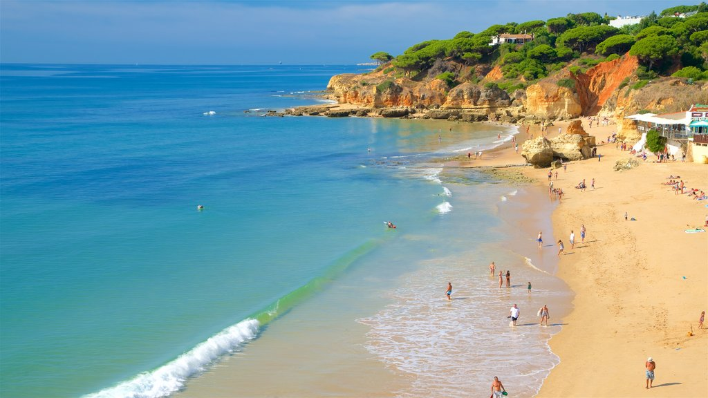 Olhos D\'Agua Beach showing general coastal views, rocky coastline and a beach