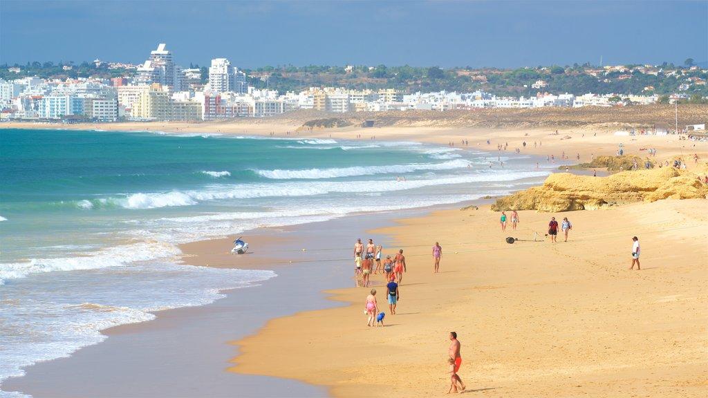 Gale Beach showing general coastal views, waves and a sandy beach