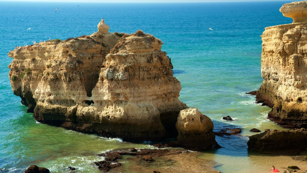 Coelha Beach which includes rugged coastline and general coastal views