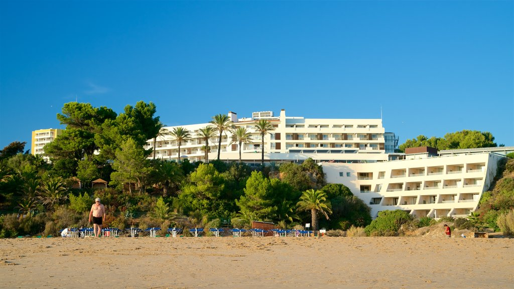Tres Irmaos Beach which includes a sandy beach and general coastal views