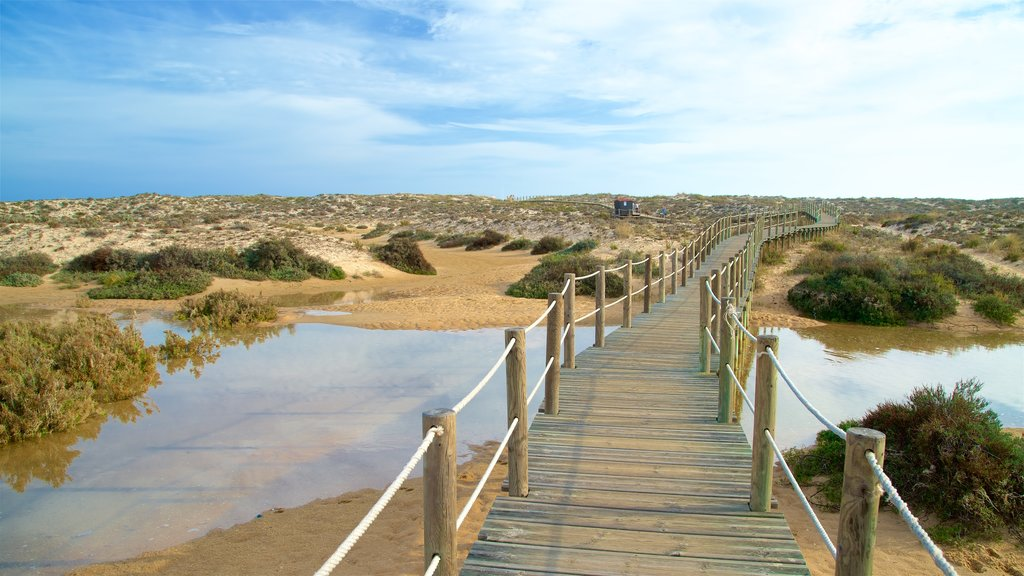 Ilha da Culatra Beach which includes tranquil scenes, a river or creek and a bridge