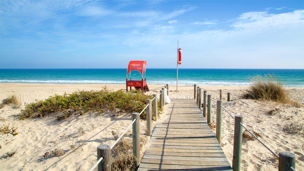 Terra Estreita Beach showing a sandy beach and general coastal views