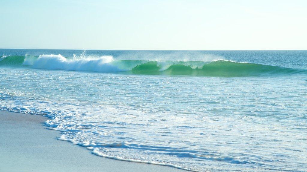 Fotos de Playa Supertubos: Ver fotos e Imágenes de Playa Supertubos