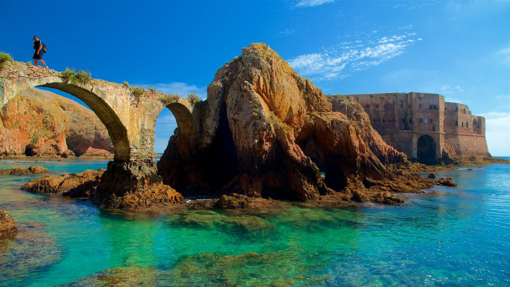 Berlenga Island featuring general coastal views, chateau or palace and heritage elements