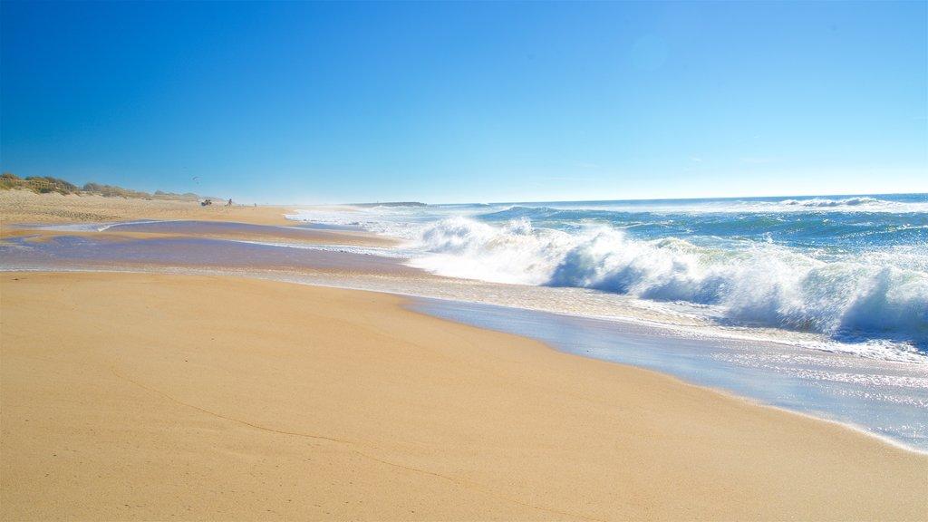 Praia da Costa Nova caracterizando surfe, paisagens litorâneas e uma praia