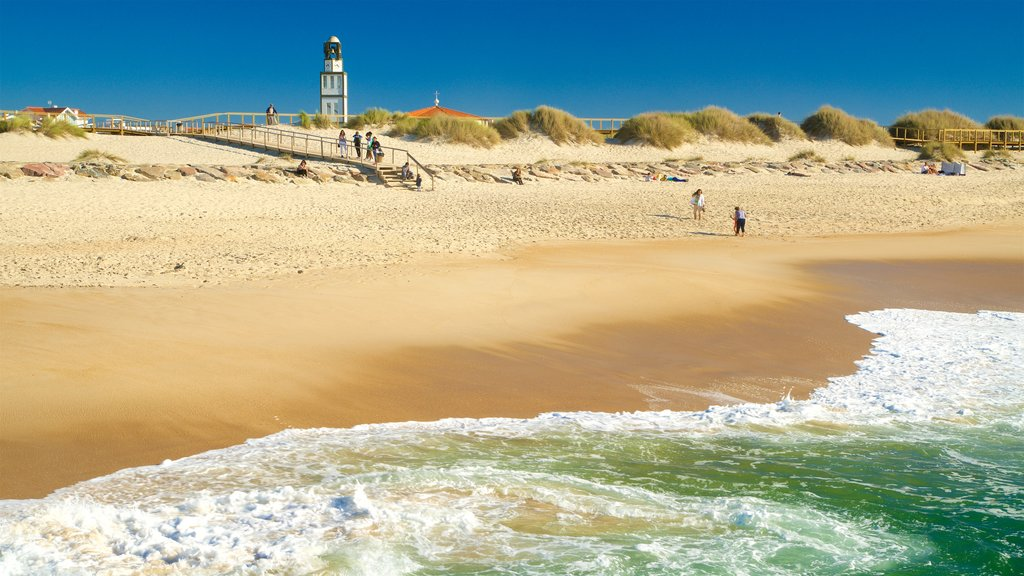 Praia da Costa Nova mostrando uma praia de areia e paisagens litorâneas