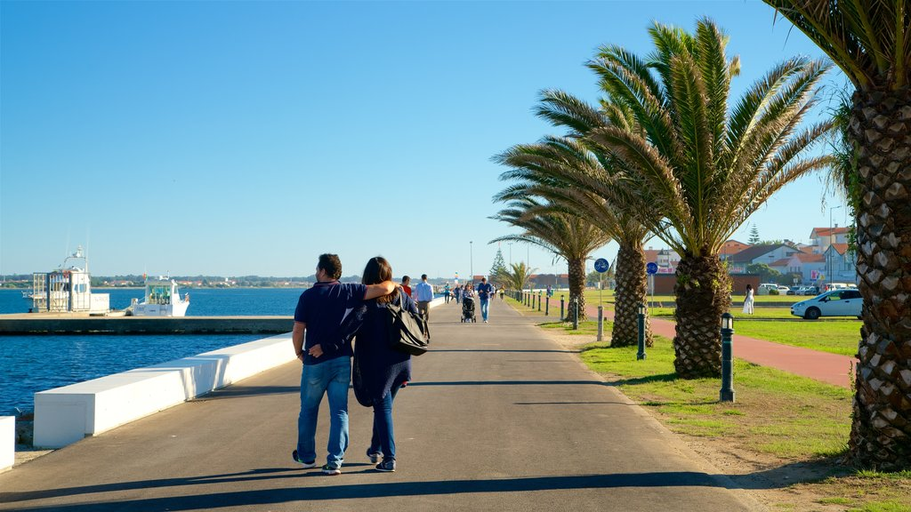 Praia da Costa Nova que inclui uma baía ou porto assim como um casal