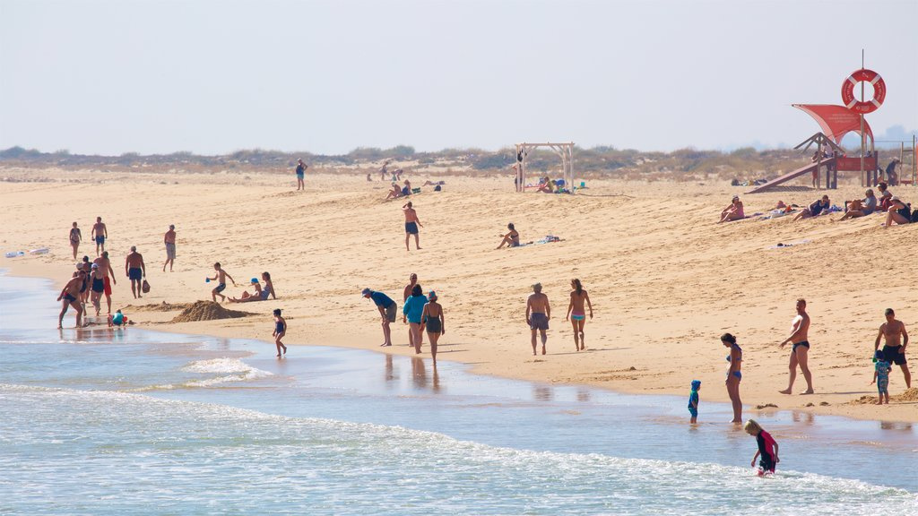 Ilha de Tavira Beach showing a beach and general coastal views as well as a large group of people