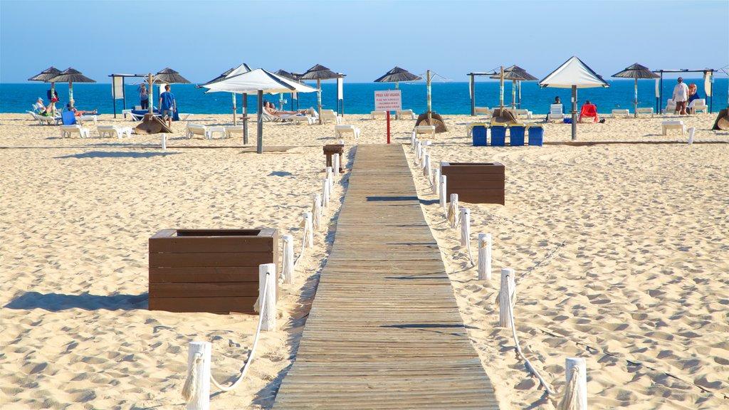 Ilha de Tavira Beach showing general coastal views and a sandy beach