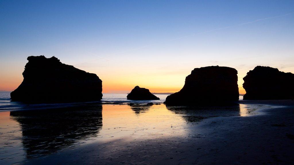 Playa Três Irmãos que incluye una playa de arena, vistas generales de la costa y costa rocosa