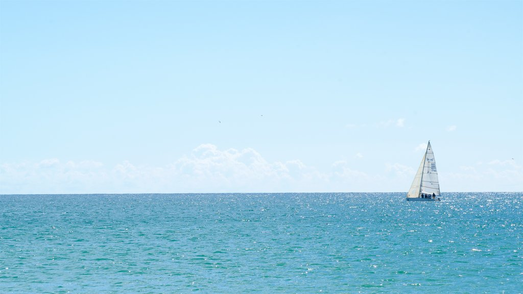 Meia Praia Beach showing general coastal views and boating