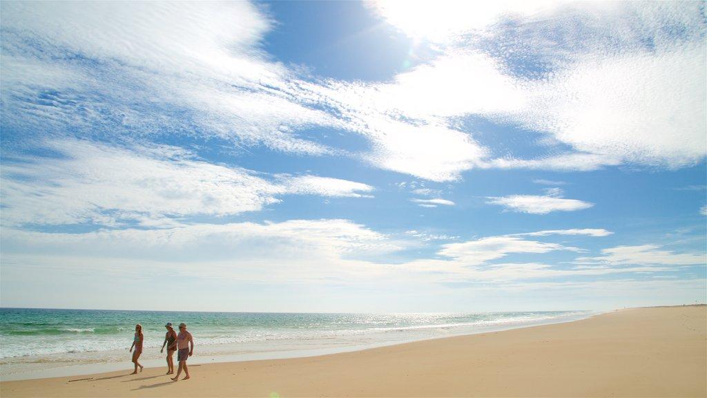 Terra Estreita Beach featuring a beach and general coastal views as well as a small group of people