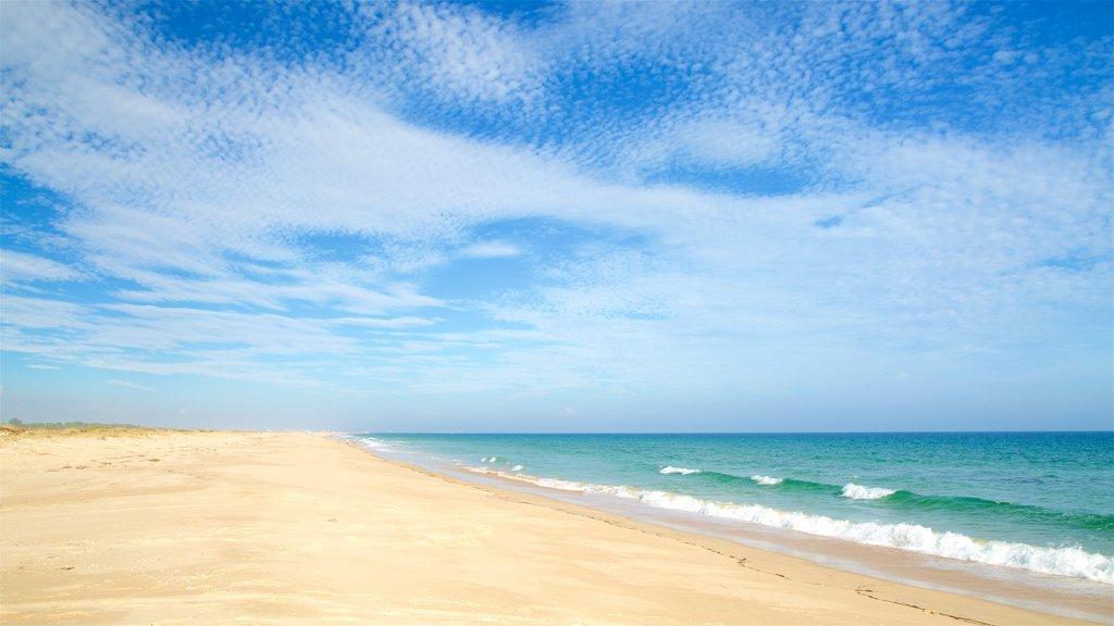 Terra Estreita Beach showing general coastal views and a sandy beach