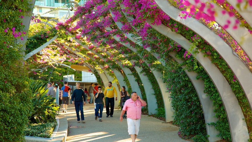 Southbank Parklands featuring wildflowers and a park as well as a small group of people