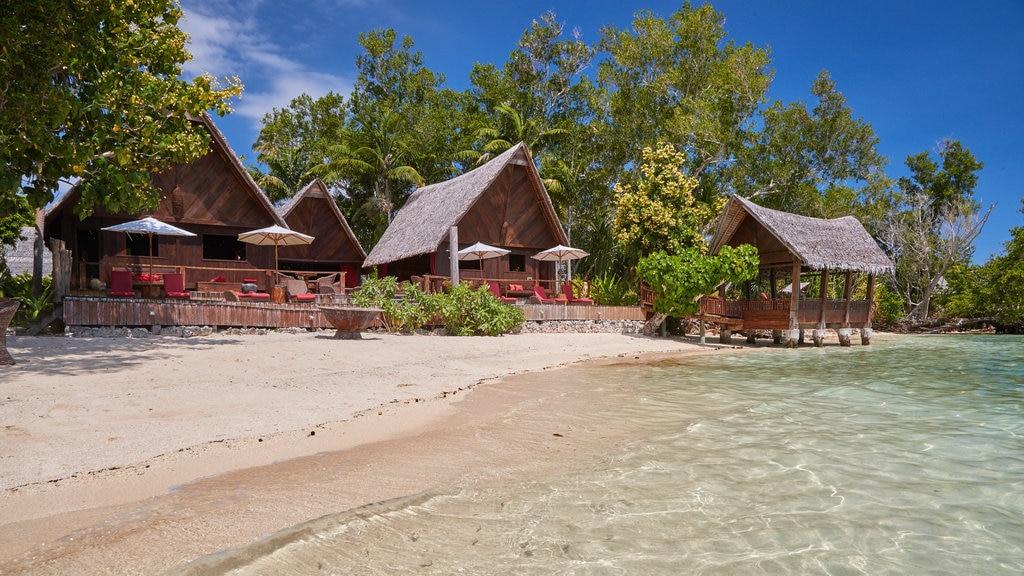 Isla Ratua que incluye escenas tropicales, vistas generales de la costa y una playa de arena
