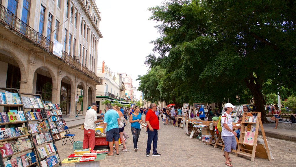Plaza de Armas which includes a park and markets as well as a small group of people