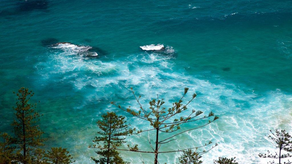 Anson Bay Beach showing general coastal views