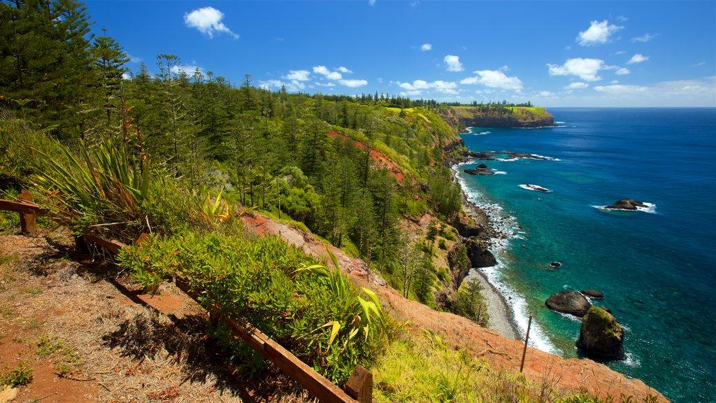Norfolk Island showing general coastal views, rugged coastline and views