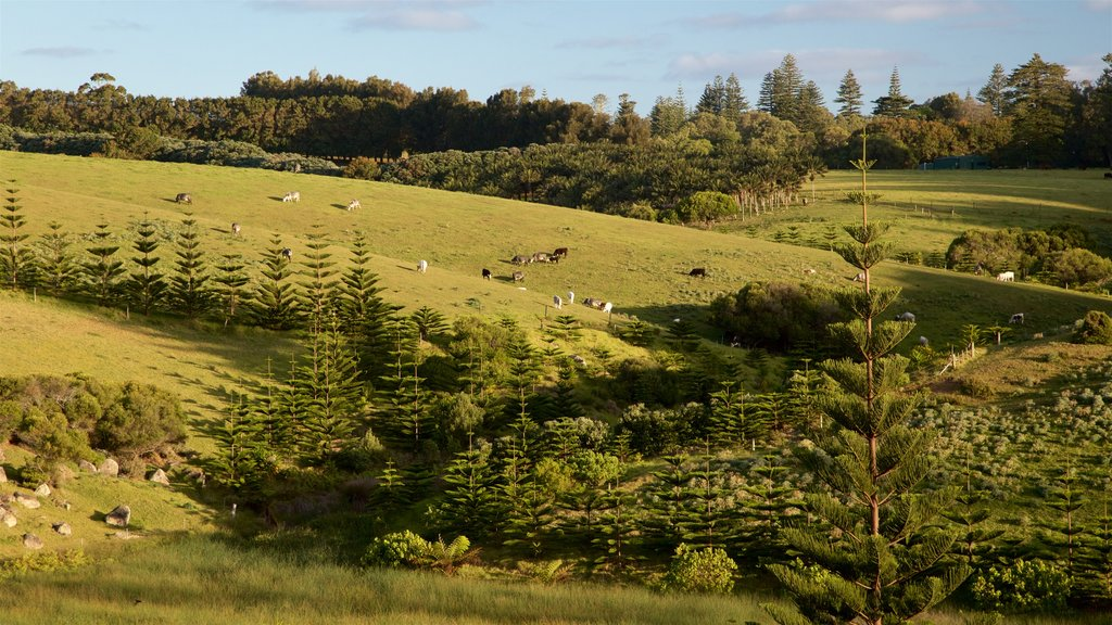 Norfolk Island which includes farmland and landscape views