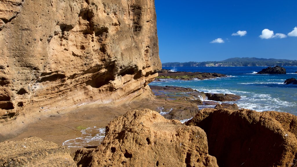 Norfolk Island showing general coastal views and rocky coastline