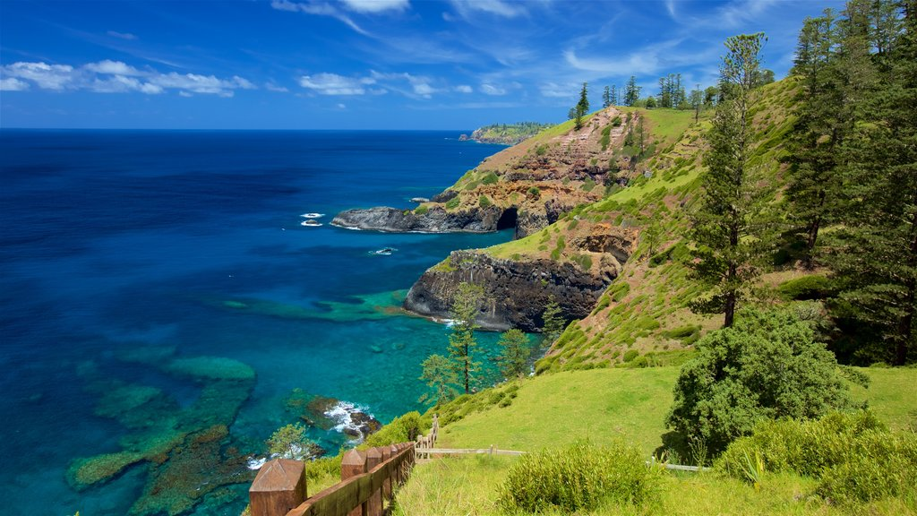 Norfolk Island National Park which includes rocky coastline and general coastal views