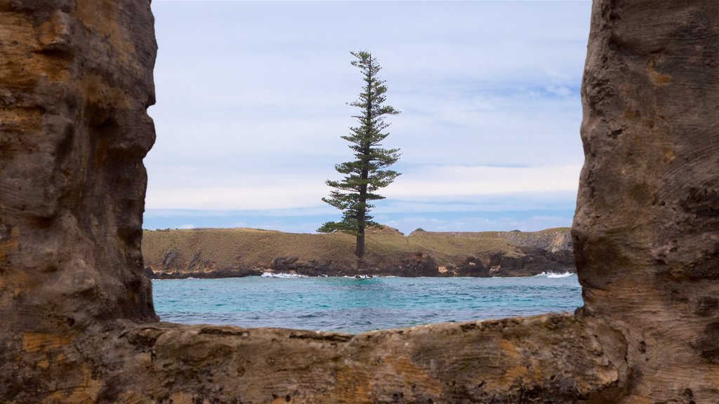 Norfolk Island showing general coastal views