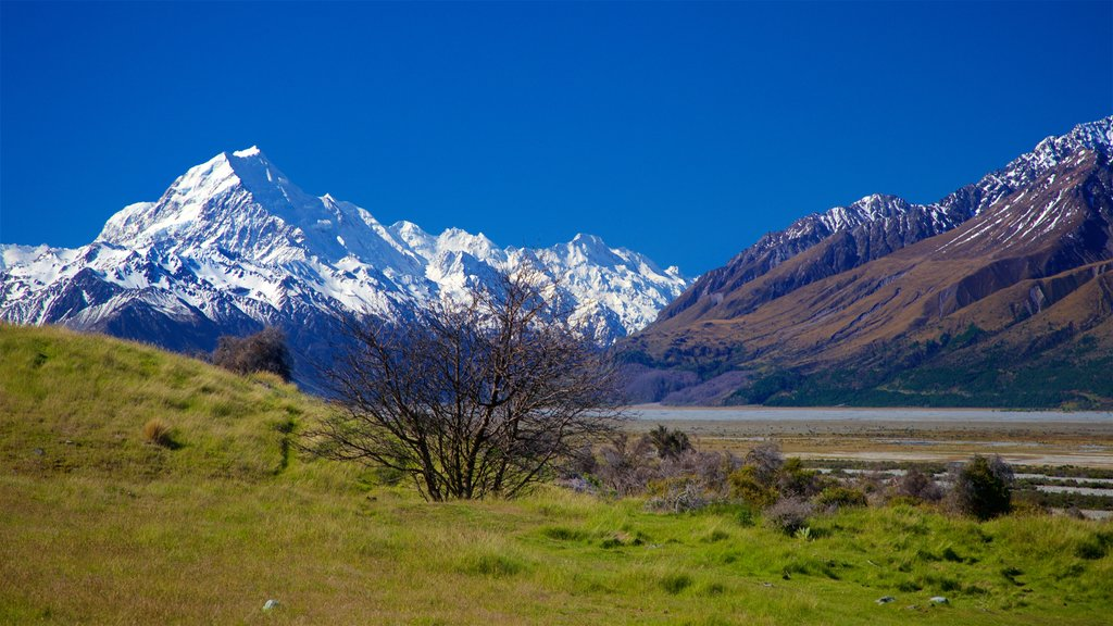Mount Cook National Park featuring landscape views, snow and tranquil scenes