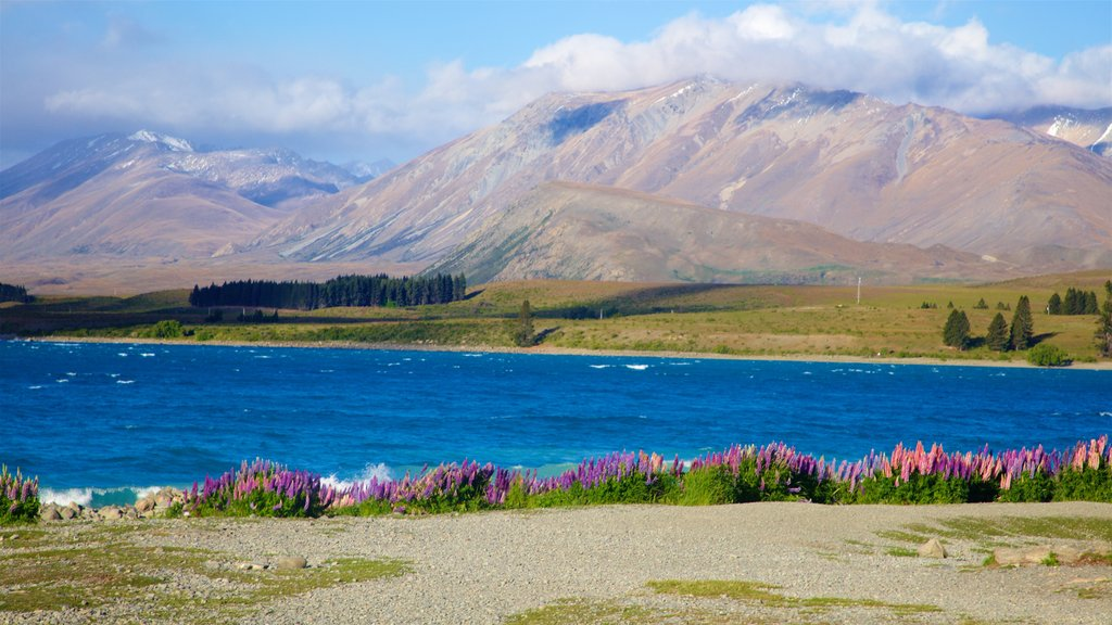Lake Tekapo which includes a lake or waterhole, mountains and tranquil scenes
