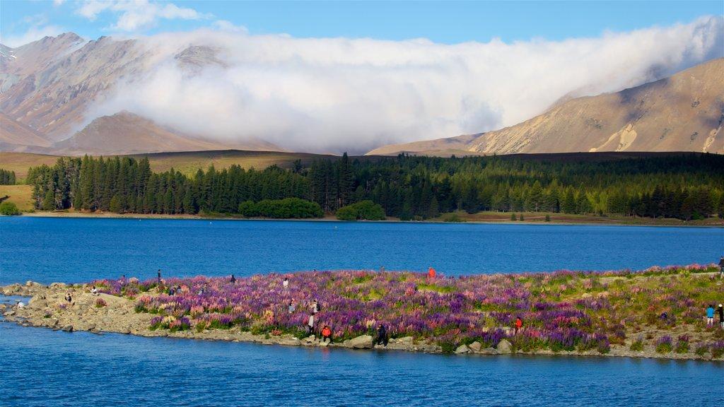 Lake Tekapo featuring mountains, mist or fog and a lake or waterhole
